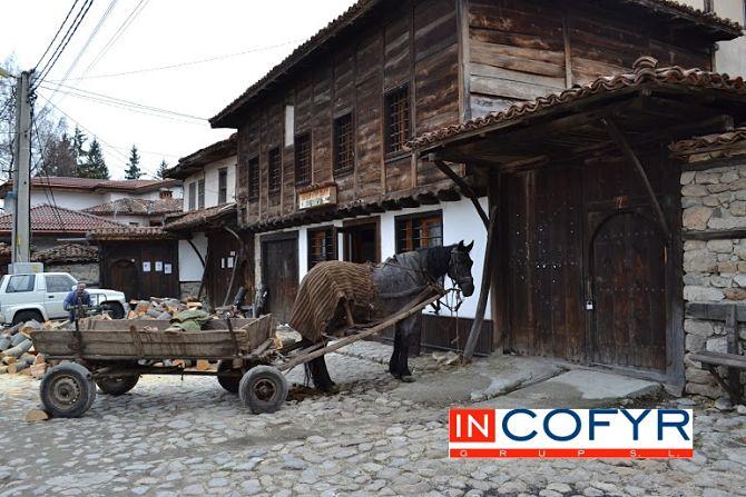 Fachada rustica de madera con carro y burro